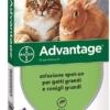 Advantage gatti grandi (+4 Kg)